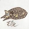 Sleeping Ellie