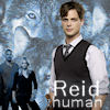 Reid-Human