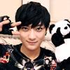 tao panda