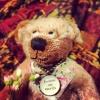 Peace_Bear
