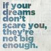 an idea is bulletproof: Dream Big