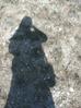 stam_adam userpic