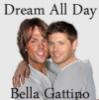 Bella Gattino