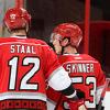 Skinner Staal