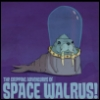 Admiral Space Walrus