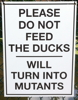 Jay Lake: signs-mutant_ducks