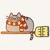 hp cat