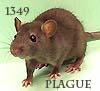 1349plague userpic