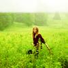 Stock- Fashion- Green Grass Grew