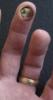 Fingerseeing