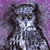 jim dine owl