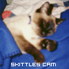 skittlescam userpic
