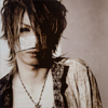 Veroxion: reita / brown