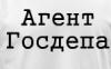 агент госдепа