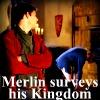 Merthur: surveys