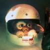 me - gizmo - helmet