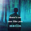 no one like Merlin