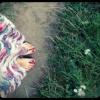 karpaty feet
