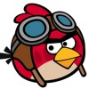 Angry Birds pilot
