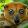 tatysho_kama userpic