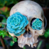 KSena: Skull with flowers by timepunching