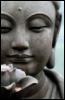 lotusbliss userpic