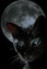 mystic_4_life userpic