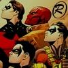 Robins are amazing
