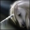 phoriia userpic