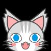 airgid_cat userpic