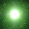 bo4karew userpic