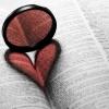 dl_blanca: kniha
