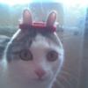 tsumannai userpic