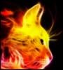 fire_cat989 userpic