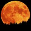 full moon, Teen Wolf