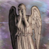 adonis_flammea: weeping angel