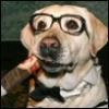 Cigar Dog