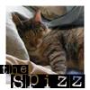 spizzalicious userpic