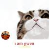 Merlin-IamGwen cover