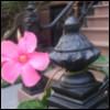 Park Slope Brooklyn flower iron work