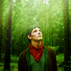 merlin // forest
