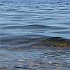 Байкал. вода