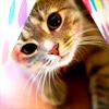 Jessica: Kitty
