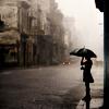 Stupid, Stripey Bitch: Rainy Day