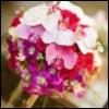 7orchidstudio userpic