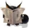Йа читатель