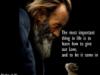 elvis1_jomia userpic