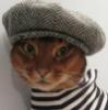 кот-анархист