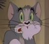 Chelesta: Кот у роспачы