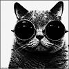 black_cat_17_cool